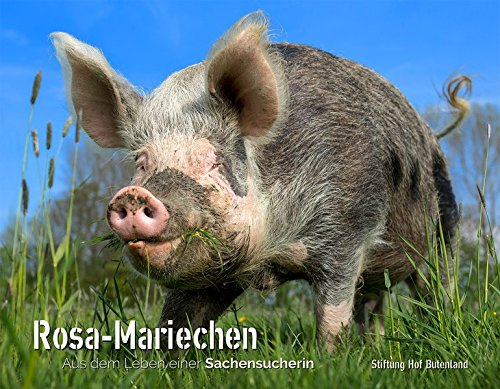 Hof Butenland Rosa Mariechen